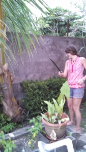 Katie leaning the Costa Rican ways using a machete!